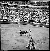 The 61st Temporada Taurina (bullfighting season) in Manizales, Colombia.