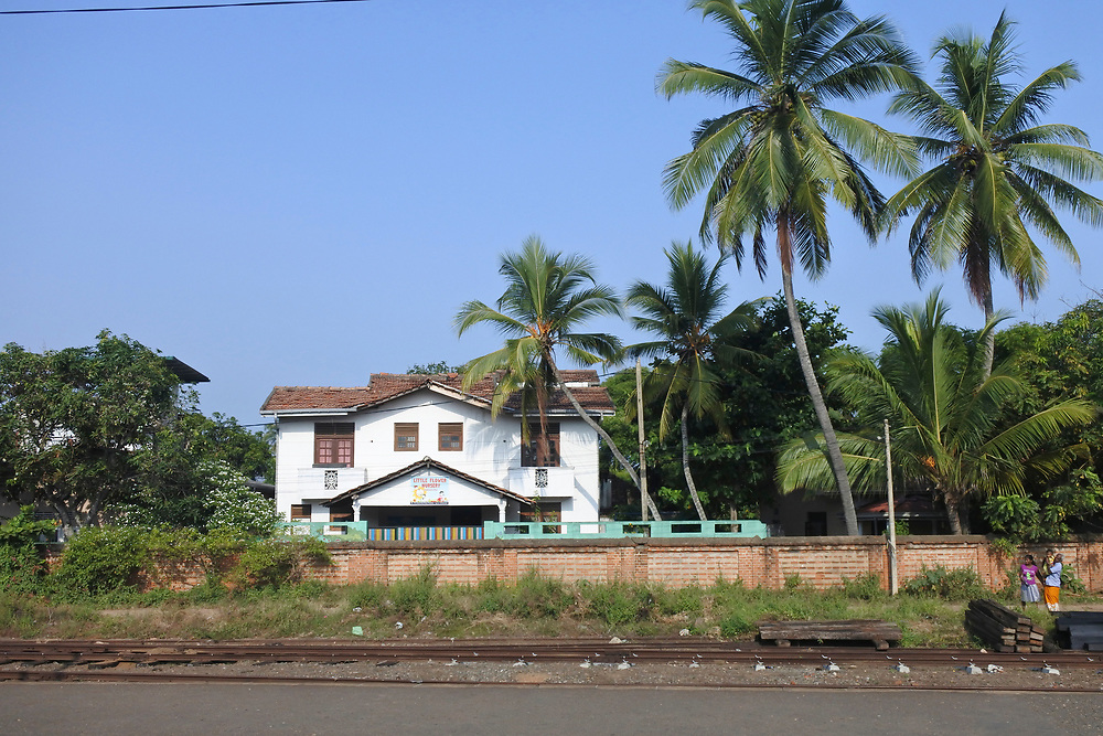 Typical house and palm trees in Sri Lanka