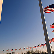 The Washington Monument and American flags against a clear blue sky in early spring in Washington Dc