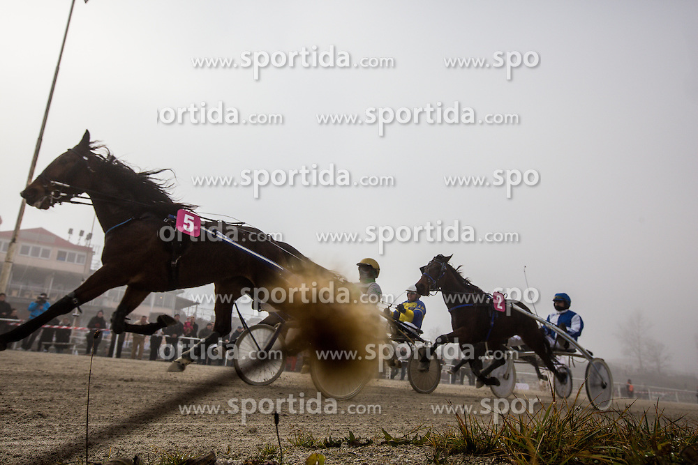 Harness racing competition at hippodrome Stozice on 26. December 2015 in , Ljubljana, Slovenia. Photo by Grega Valancic / Sportida