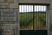 Domaine Louis Jadot vineyards, Beaune France.
