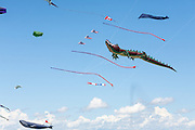 Kites soar high above the crowds at Windscape Kite Festival, Swift Current, Saskatchewan.