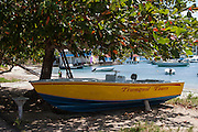 colorful boat beached under tree in Admiralty Bay Bequia West Indies
