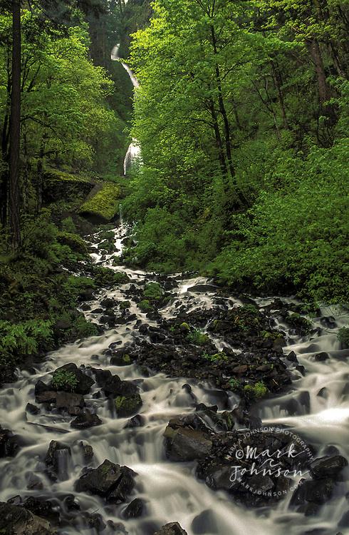Oregon, Columbia River Gorge, Wahkeena Falls