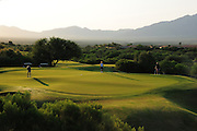 The Santa Rita Mountains of the Coronado National Forest in the Sonoran Desert serve as a backdrop for the San Ignacio Golf Club in Green Valley, Arizona, USA.