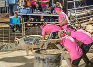 2017 Laramie County Fair