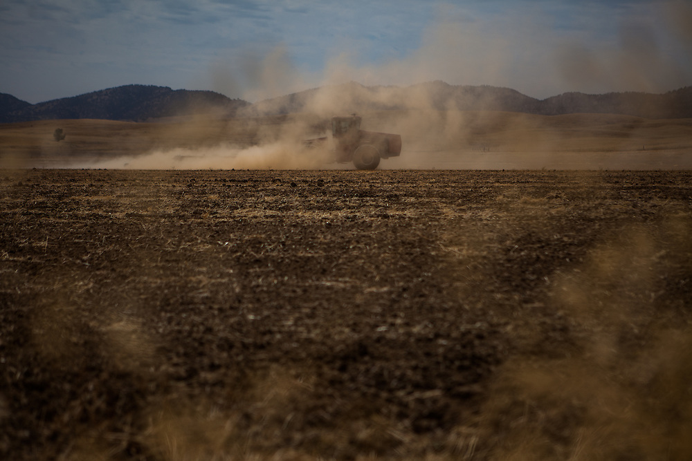 MAXWELL, CA - AUGUST 12: Dust blows around a farmer as he discs a dry, fallowed field. (Photo by Max Whittaker/Prime for The Washington Post)