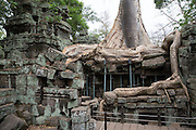Silk-cotton tree routes grow around an ancient ruin of the Ta Prohm temple, known as the jungle temple,  in Angkor region Siem Reap Province, Cambodia, South East Asia. The building is supported with metal supports to prevent any further destruction.  (photo by Andrew Aitchison / In pictures via Getty Images)