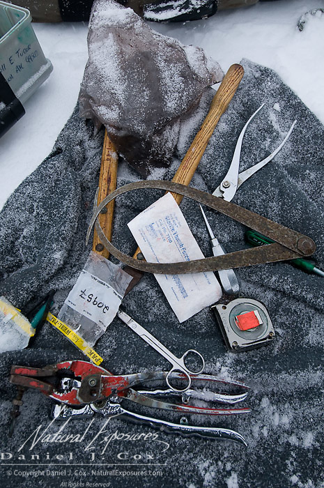 Tools of the trade of a polar beat scientist capturing bears.