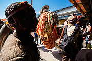 Deity waiting to take blessings from Lord Raghunath at his temple in Kullu, Himachal Pradesh, India. Kullu Dussehra is the Dussehra festival observed in the month of October in Himachal Pradesh state in northern India. It is celebrated in the Dhalpur maidan in the Kullu valley. Dussehra at Kullu commences on the tenth day of the rising moon, i.e. on 'Vijay Dashmi' day itself and continues for seven days. Its history dates back to the 17th century when local King Jagat Singh installed an idol of Raghunath on his throne as a mark of penance. After this, god Raghunath was declared as the ruling deity of the Valley. Hindu Festival of Kullu Dussehra in the Himalayan Town of Kullu, Himachal Pradesh