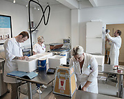 Lab technicians work at Cryos International, a sperm bank in Aarhus, Denmark<br /> Cryos International is located on the fifth floor of a small building in Aarhus, Denmark. It looks like any other office, but inside, it's among the world's largest sperm banks.<br />