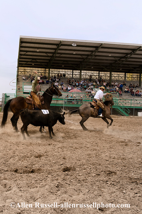Will James Roundup, Ranch Rodeo, Cow Doctoring, Hardin, Montana, Buck Brannaman, Nate Wald