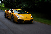 CAFE, Lamborghini Gallardo. All images (c) Jamey Price for QC Exclusive.