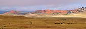 Wyoming & South Dakota