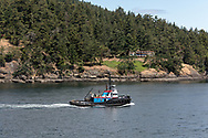 Albert L Ledcor tugboat in Active Pass off of Galiano Island.  Photographed from the deck of a BC Ferries vessel in Active Pass between Galiano Island and Mayne Island in British Columbia, Canada.