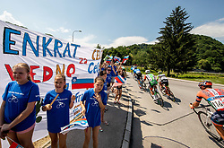Supporters in Celje during 2nd Stage of 26th Tour of Slovenia 2019 cycling race between Maribor and Celje (146,3 km), on June 20, 2019 in  Slovenia. Photo by Vid Ponikvar / Sportida