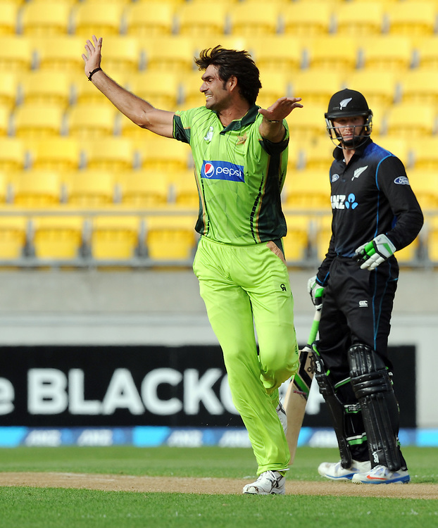 Pakistan's Mohammad Irfan unsuccessfully appeals the wicket of New Zealand's Brendon McCullum in the 1st One Day International cricket match at Westpac Stadium, New Zealand, Saturday, January 31, 2015. Credit:SNPA / Ross Setford