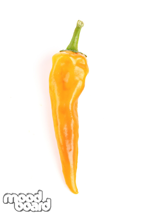 Close-up of chilli pepper on white background