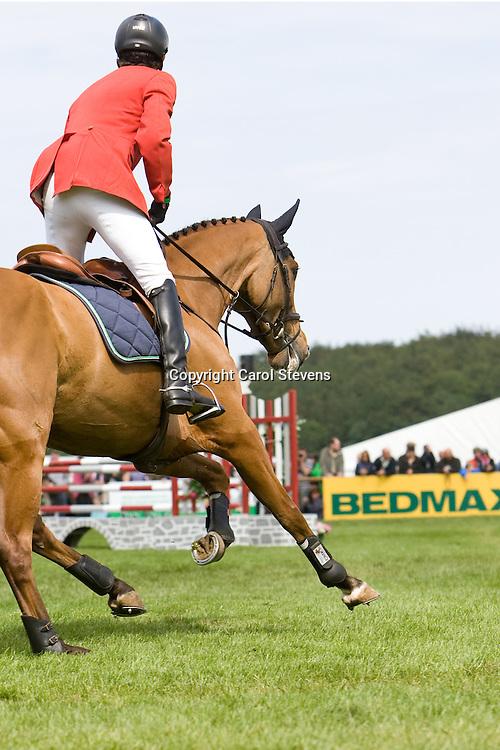 Kai Reuder and Saaten Unions Master Boy  Bramham International Horse Trials CCI3* 2011