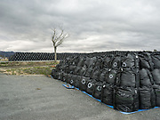Thousands of black sacks containing radiation-contaminated soil sit at an interim storage facility in Tomioka, Japan. There are currently 5.5 million of the giant sacks spread throughout Fukushima province and that number could climb to over 20 million by the time the cleaning operations are finished, currently planned for 2017.