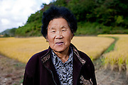 Portrait of a woman standing in front of a rice field at the Gangwon-do province a few kilometers from the Demilitarised Zone (DMZ) which is deviding North and South Korea. / Goseong-Gun, South Korea, Republic of Korea, KOR, 08 October 2009.