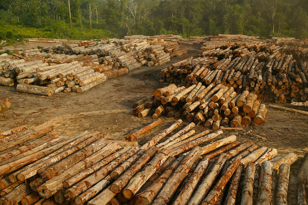 Dec. 12, 2003: A log sorting yard seized by the Ibama Police in the Porto de Moz region of Para State, Brazil. ©Daniel Beltra