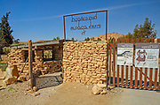 Israel, Negev, Mitzpe Ramon, The Alpaca Farm