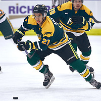 1st year forward, Tyler Kreklewich (21) of the Regina Cougars during the Men's Hockey Home Game on Sat Jan 26 at Co-operators Center. Credit: Arthur Ward/Arthur Images