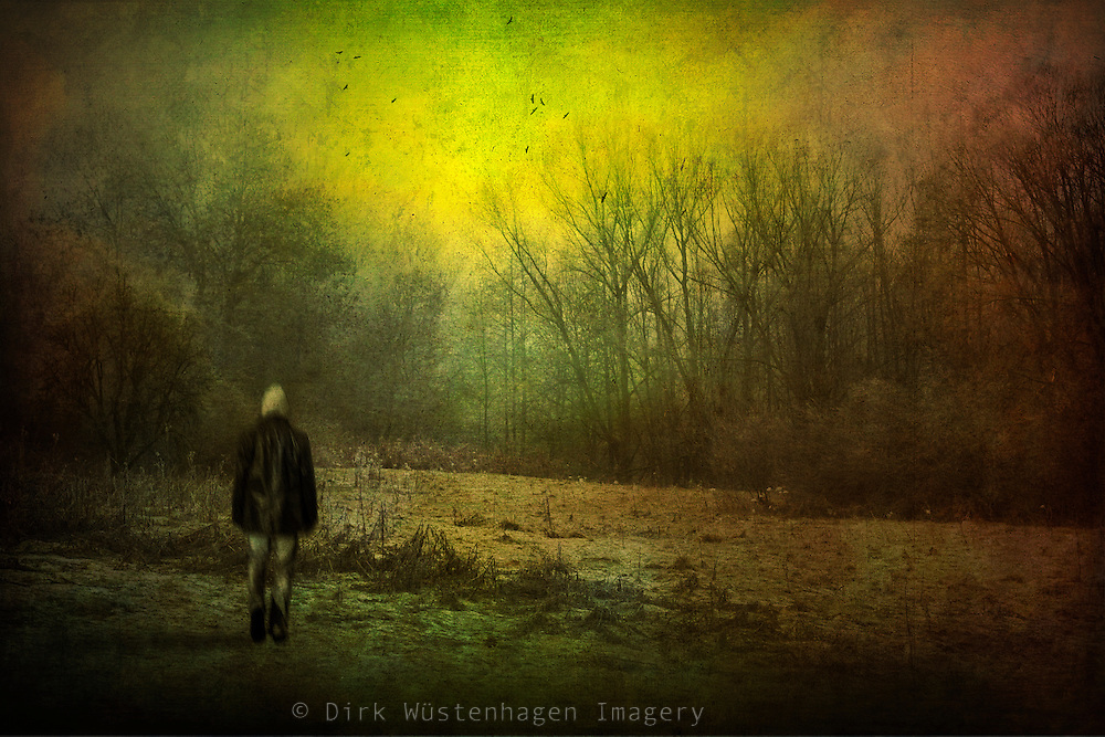 Man walking over frozen ground listening to the bird's echoes<br /> <br /> Prints: http://society6.com/DirkWuestenhagenImagery/only-echoes