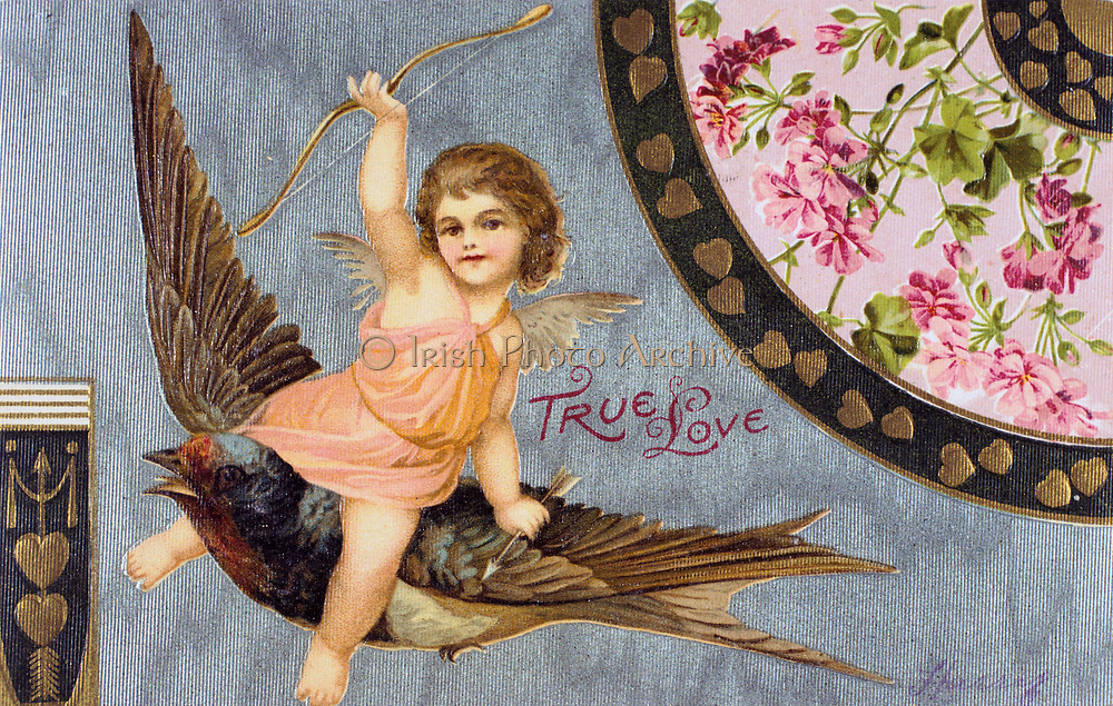 True Love', American Valentine card, 1908. Cupid , his bow held aloft, rides a Swallow, a Bluebird of Happiness.   In Roman mythology Cupid was the son of Venus, goddess of love (Eros and Aphrodite in the Greek Pantheon).  The identity of St Valentine is uncertain, the most popular candidates are Valentine, bishop of Terni (3rd century) or a Roman Christian convert martyred c270).  St Valentine's Day, celebrated on 14 February, probably replaces the Roman pagan festival of Lupercalia.