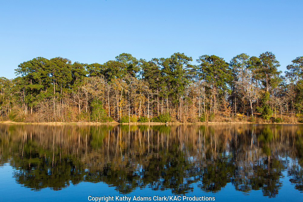 Huntsville State Park, in autumn, north of Houston, texas and south of Huntsville, texas.