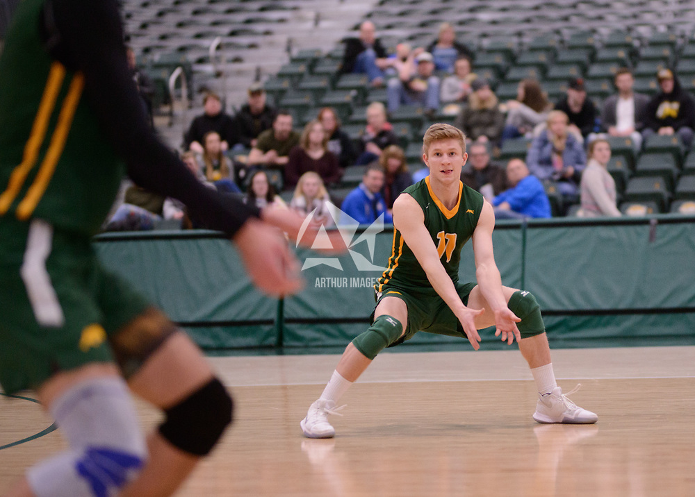 4th year setter Michael Corrigan (11) of the Regina Cougars in action during Men's Volleyball home game on February 2 at Centre for Kinesiology, Health and Sport. Credit: Arthur Ward/Arthur Images