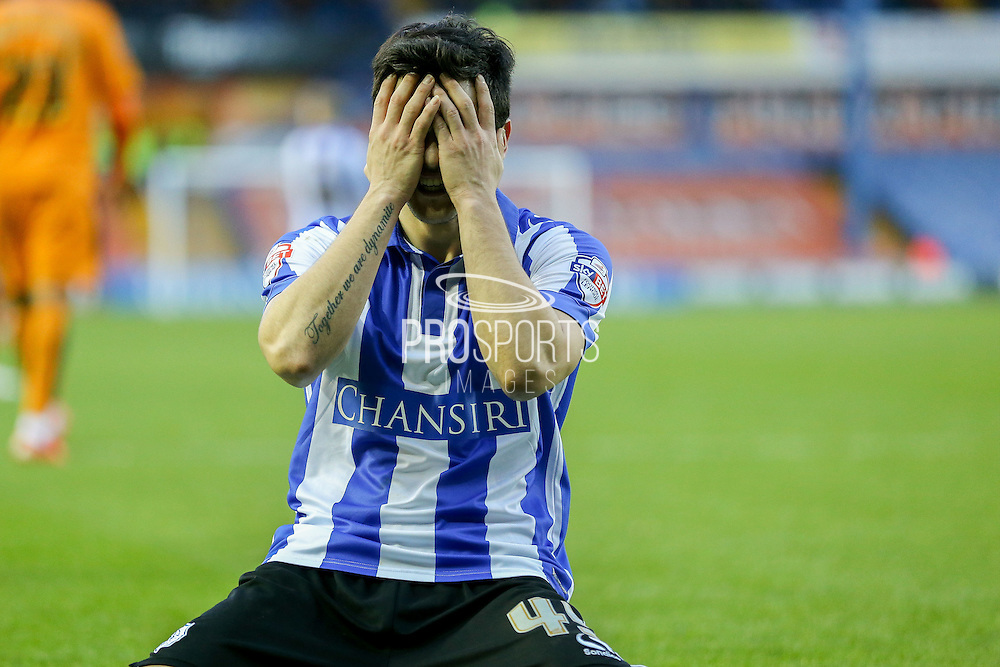 Sheffield Wednesday striker Fernando Forestieri  holds his head as he misses during the Sky Bet Championship match between Sheffield Wednesday and Wolverhampton Wanderers at Hillsborough, Sheffield, England on 20 December 2015. Photo by Simon Davies.