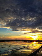 14 MAY 2013 - BANGTATHEN, SAPHUNBURI, THAILAND:  Sunrise in Bangtathen, Saphanburi, Thailand.    PHOTO BY JACK KURTZ