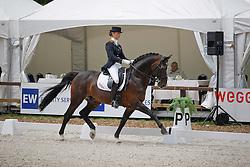 De Jongh Kimberley (NED) - Inspekteur      <br /> Nederlands kampioenschap dressuur - De Steeg 2009<br /> © Hippo Foto-Leanjo De Koster