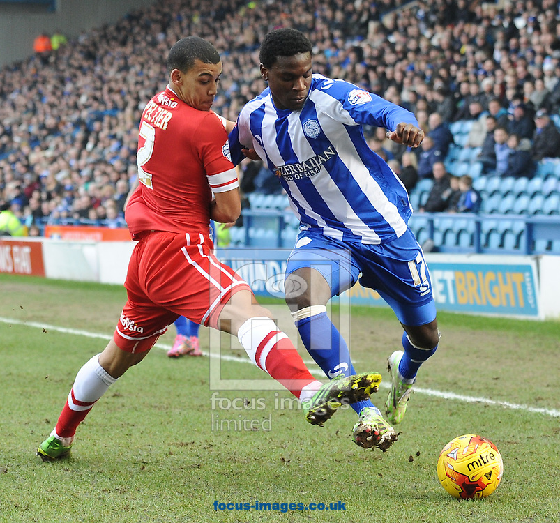 Jeremy Helan of Sheffield Wednesday and Lee Peltier of Cardiff City during the Sky Bet Championship match at Hillsborough, Sheffield<br /> Picture by Richard Land/Focus Images Ltd +44 7713 507003<br /> 07/02/2015