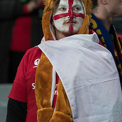 Lions Fan, Eden Park, Auckland game 2 of the British and Irish Lions 2017 Tour of New Zealand,The match between the Auckland Blues and British and Irish Lions, Wednesday 7th June 2017   <br /> <br /> (Photo by Kevin Booth Steve Haag Sports)<br /> <br /> Images for social media must have consent from Steve Haag