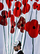 © Licensed to London News Pictures. 13/11/2011. London, UK. A protester stands next to a mural of poppies. Occupy London protest camp During the Remembrance Service held at St Paul's Cathedral in London today, 13th November 2011. Photo credit : Stephen Simpson/LNP