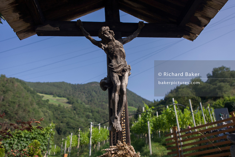 A crucifix located on the edge of a vineyard in the South Tyrolean town of Klausen-Chiusa in northern Italy.