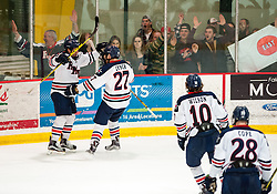 March 13 2016: Robert Morris Colonials forward Zac Lynch (27) celebrates with teammates after scoring a goal during the second period in game three of the Atlantic Hockey quarterfinals series between the Bentley Falcons and the Robert Morris Colonials at the 84 Lumber Arena in Neville Island, Pennsylvania (Photo by Justin Berl)