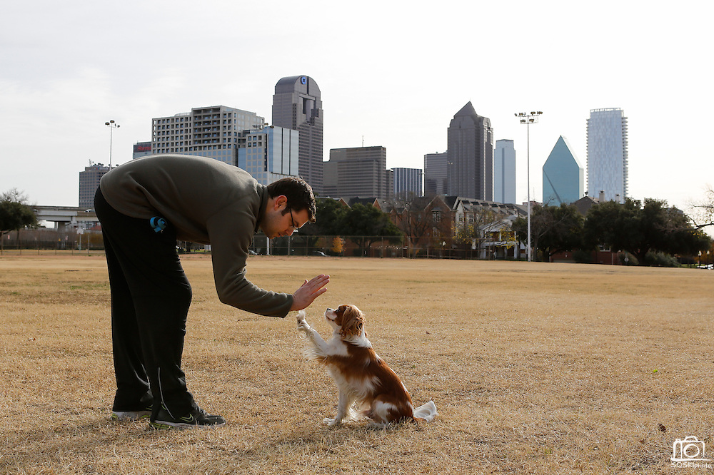 Nathan Butler gives his dog, Louie, a high five after returning a stick during a game of fetch at Griggs Park near Woodall Rodgers Freeway and Clark Street in Dallas, Texas, on December 22, 2012.  (Stan Olszewski/The Dallas Morning News)