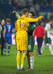 OSIJEK, CROATIA - Tuesday, October 16, 2012: Wales' Gareth Bale and Croatia's goalkeeper Stipe Pletikosa during the Brazil 2014 FIFA World Cup Qualifying Group A match at the Stadion Gradski Vrt. (Pic by David Rawcliffe/Propaganda)