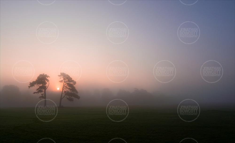 Misty Autumnal sunrise on Durdham Downs Bristol