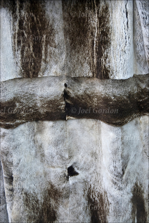 Close up of patterns and texture of tanned animal pelts and hides custom made into luxury items as fur coats and jackets.