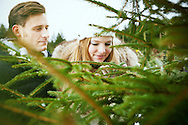 Young Couple, Romance, Christmas Tree, Examining, Choosing,