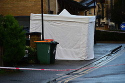 © Licensed to London News Pictures. 20/12/2019. London UK: Forensic tent a property in Hanameel street, Silvertown in Newham, East London after a male in his late twenties was found with stab wounds, Paramedics pronounced him dead at around 2.45 this morning. Detectives have arrested a male in connection with the investigation, Photo credit: Steve Poston/LNP