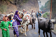 Moving into the Himalayas, along the road that follows the Yamuna River.