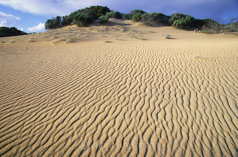Ripples on sand dunes, Innes National Park, South Australia.