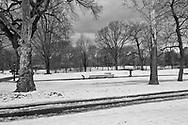 Central Park near North Meadow
