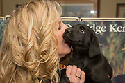 Tina Dokken snuggles with a Lab pup at Dokken's Oak Ridge Kennels in Minnesota